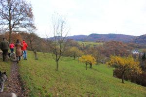 Wanderung durch Wald und Wiesen